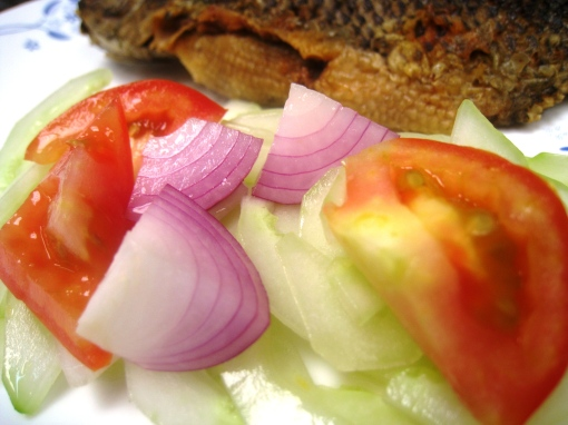 enteng_recipe-cucumber-tomato-onion-salad-06