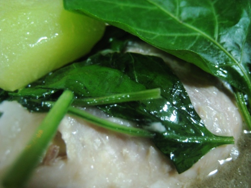 enteng-chicken-tinola-01