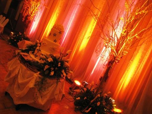 Ian Marie Wedding - Wedding Cake 02