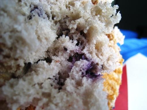 Otis Spunkmeyer - Blueberry Muffins 05