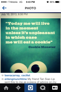 "Words of Wisdom from the Cookie Monster.  In my case, I just live by the part that says, ""ME WILL EAT A COOKIE""!"