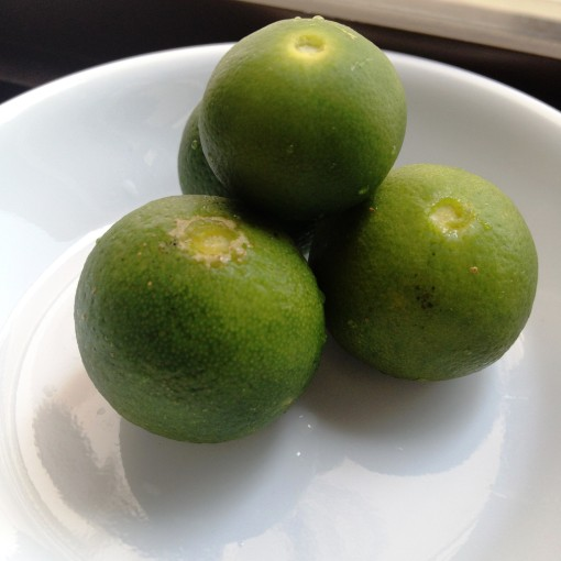 All I prefer to add to my sauce is a squeeze of these fat kalamansi!